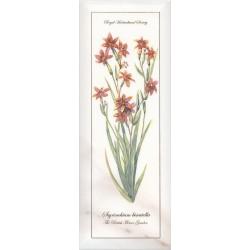 Декор Ноттингем Цветы грань NT A88 15005